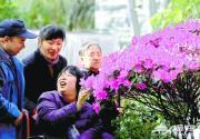 北京植物园举办芳香植物展览