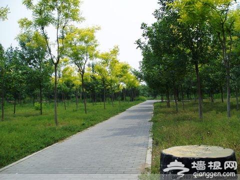 """昌平东小口森林公园二期开建 """"五一""""免费开放"""