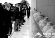 百件彩陶入藏国博