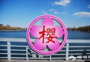 2012年玉渊潭樱花节将延迟