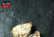 北京吃蛎好去处 与牡蛎接一个冷艳的吻