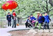 琉璃河梨花文化节开幕 万亩梨花绽放