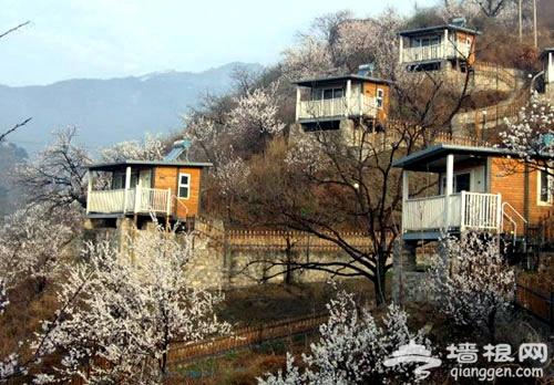 去怀柔巴克公社 感受山坡小木屋风情