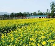 瀚海农业观光园