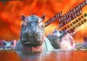 北京动物园里看影展