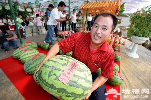 2012年大兴西瓜节28日开幕