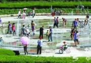 游客戏水植物园