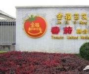 金福艺农番茄联合国