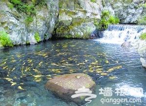 相约怀柔响水湖 寻访京郊养生谷[墙根网]