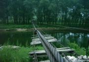 永定河峡谷漂流:苍龙入群山 万米长漂展豪情