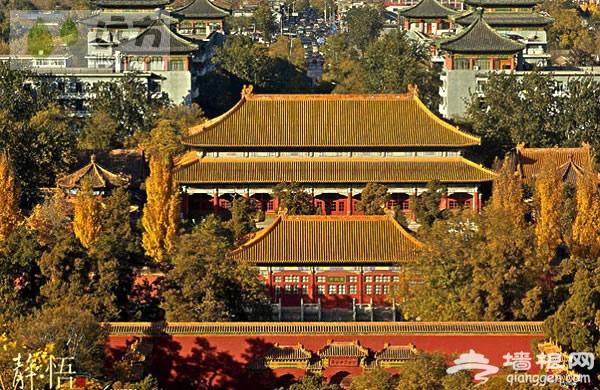 8.景山公园 大家都知道故宫,却很少知道故宫的后花园景山公园,也就是崇祯皇帝自缢的地方,这也是一个皇城公园,但是不同的是,景山公园的万春亭是皇城的最高处,可以一览故宫的全景…… 只要来北京的都会到景山上走一遭,因为那里能俯视全城,看金碧辉煌的古老紫禁城和现代化的北京城。如果秋日走上景山顶,看的不是银杏,但那满眼的秋黄与红色的故宫墙壁交相呼应,历史的沧桑与厚重让人更加寻味。景山公园内也有银杏,也许是因为某个皇帝在这里自缢,所以人们不是很喜欢在这里欣赏景色,但这般静谧正好迎合了摄影者的口味。 门票:2元 最佳观赏时间:走出故宫北门,过马路即到景山公园南门。一定要选择在艳阳高照日,慢慢的品味完故宫的深厚底蕴后,下午5点半左右进景山公园,秋天北京的落日一般在6点左右。 提示:秋季景山上有很多柿子挂在树上,一片片的很好看。 交通指南:5路景山西街下,58、60、111、124路景山东街下车,111、124路路景山东门下车,101、103、109、124、810、685、814、846路故宫下车。