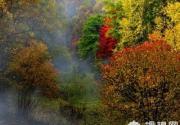 鹫峰国家森林公园——秋季红叶正当时