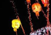 2013年京郊元宵节活动