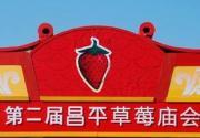 2013第二届昌平草莓庙会摄影