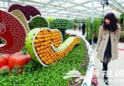 2013首届北京农业嘉年华昌平开幕