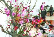 2013中山公园梅兰文化节开幕