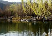 2013北京香山公园山花节