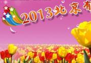2013北京国际鲜花港郁金香文化节上周日将开幕