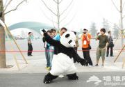 来北京园博会 感受童趣花车