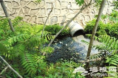 上庄水库遭垃圾围绕 十余排污管道直接伸向水库[墙根网]