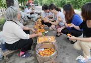 2013北京平谷第十二届北寨红杏文化节开幕
