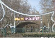 枫花园汽车电影院 北京人最私密的汽车影院