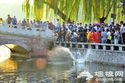 北京什刹海百余斤鱼放生时遭哄抢 2名围观者落水