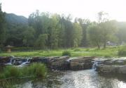 六渡河野生湿地公园