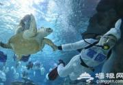 富国海底世界海洋馆