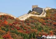 国庆期间八达岭红叶变色率将达30% 文化节为期39天
