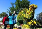金骆驼亮相北京世界花卉大观园