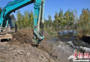 白洋淀非法围淀造景企业道歉 已抽干3千余亩水