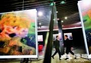 北京国际摄影周10月25日起在中华世纪坛举办