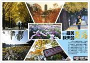 深秋摄影游 北京秋季最适合拍照的景区推荐