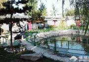 京城后院特色温泉推荐 年轻人的活力聚集地