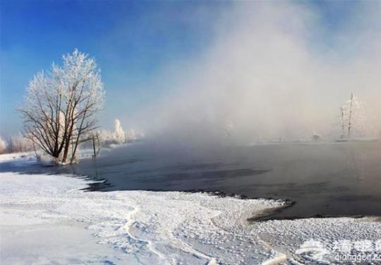 2014哈尔滨冰灯游园会 畅游冰上童话世界
