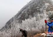 大觉寺附近山区现大面积雾凇奇景
