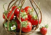 上海草莓采摘指南