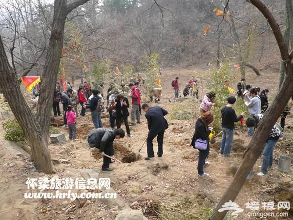 灵慧山景区第四期万亩山地植树造林活动正式启动