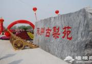 2014涿州梨花节 万亩梨园飘花香