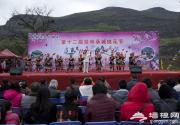 2014廣西恭城第十二屆桃花節開幕