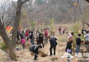 2014北京植树节哪有活动?京郊植树节活动搜罗