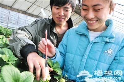 2014北京农业嘉年华特色展馆介绍[墙根网]