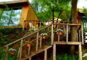 京郊三大树屋旅馆 感受童话浪漫