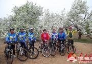 2014怀来第七届海棠花节正式启动