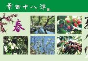 2014京西十八潭野生桑葚节