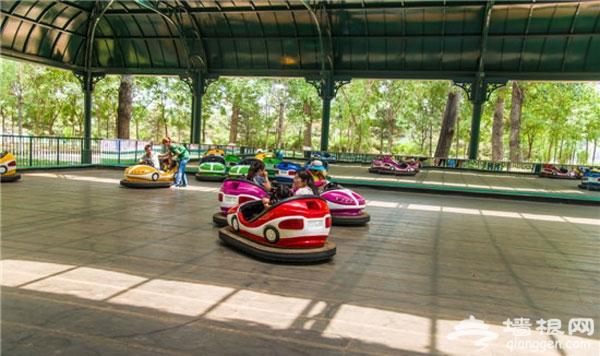 周末带娃新去处 通州最大游乐场在大运河森林公园开业啦