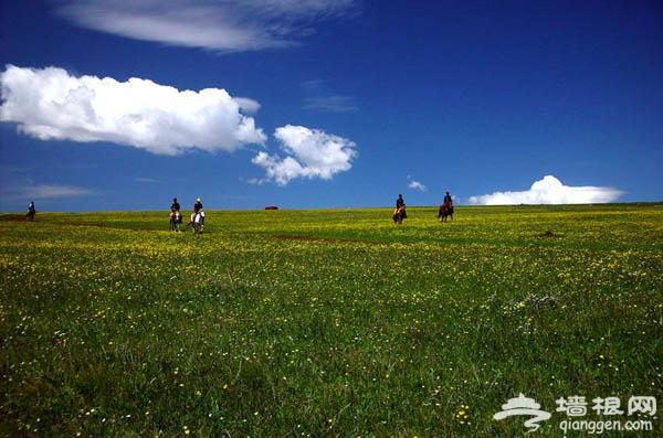 暑假北京周边游 蔚县空中草原
