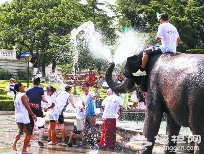 世界公园举办第八届泰国大象泼水节