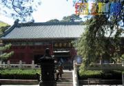 夏季京郊大优惠 门头沟戒台寺景区暑期祈福纳凉活动